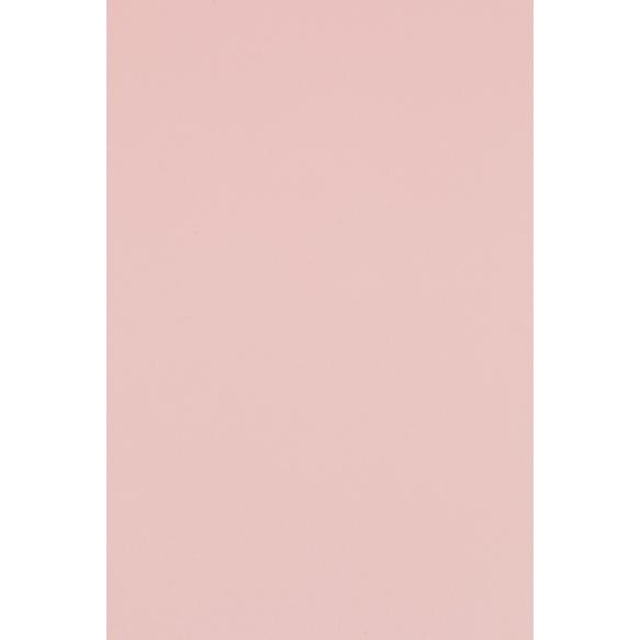 WL-1100450