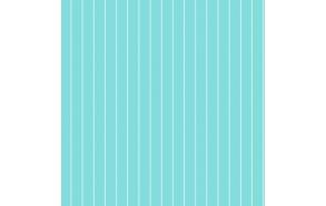 Hoopla Pin Stripe Sidewall Turquoise