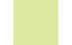 Hoopla Pin Stripe Sidewall Green