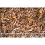 Männyn kuorikate Woodpeckers, 15-50mm, 1,8m3