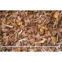 Männyn kuorikate Woodpeckers 15-50mm, 36 säkkiä x 70l/lava, 2520 litraa