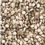 Pebbles Sidewall, Neutral